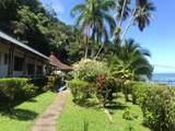 Sailfish Rancho Golfito Costa Rica - Photo 20