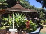 Sailfish Rancho Golfito Costa Rica - Photo 23