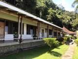 Sailfish Rancho Golfito Costa Rica - Photo 26