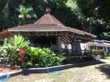Sailfish Rancho Golfito Costa Rica - Photo 3