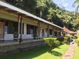 Sailfish Rancho Golfito Costa Rica - Photo 35