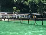 Sailfish Rancho Golfito Costa Rica - Photo 6