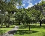 22055 Cocoa Palm Way - Photo 3