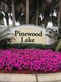 1152 Pinewood Lake Court - Photo 7