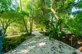 12908 Cocoa Pine Drive - Photo 33