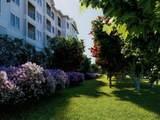 3650 Rca Boulevard Boulevard - Photo 9