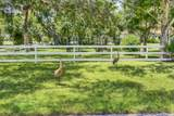 10112 Calabrese Trail - Photo 42