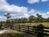25952 Jockeys Run - Photo 30