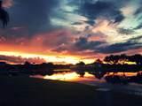 8845 Egret Isle Point - Photo 1