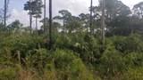 Tbd Slash Pine Trail - Photo 1
