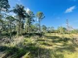 0 Treetop Trail Trail - Photo 5