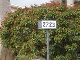 2723 Dudley Drive - Photo 2