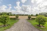 4700 Stables Way - Photo 21