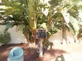 11 Royal Palm Way - Photo 27