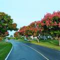 2566 Garden Drive - Photo 17