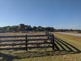 26156 Jockeys Run Run - Photo 4