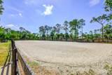 2858 Palm Deer Drive - Photo 5