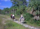 2858 Palm Deer Drive - Photo 92