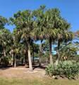 Tbd Palm Drive - Photo 5