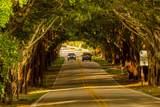 8335 Palm Street - Photo 37