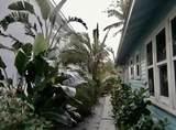 109 Palmway - Photo 24