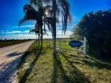 6505 Lily Lane - Photo 19