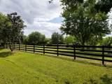 2131 Hunter Drive - Photo 13