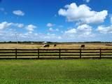 2131 Hunter Drive - Photo 17