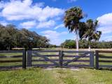 2131 Hunter Drive - Photo 21