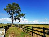 2131 Hunter Drive - Photo 6