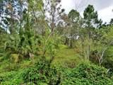 00 Shanas Trail - Photo 3
