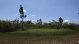 0 Calendula Drive - Photo 1