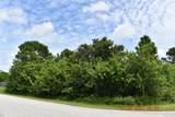 199 Elderberry Drive - Photo 4