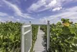 1171 Ocean Boulevard - Photo 20