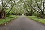 8563 Horseshoe Lane - Photo 6