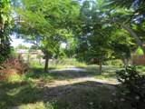 191 Hibiscus Tree Drive - Photo 13