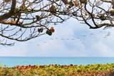 1140 Coral Way - Photo 28