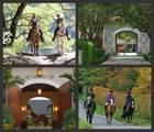 15835 Meadow Wood Drive - Photo 74