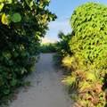 9415 Ocean Drive - Photo 33