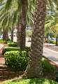 1012 Ocean Boulevard - Photo 69