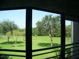 5650 Camino Del Sol - Photo 5