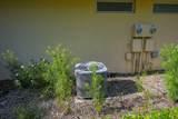 704 Sun Terrace Court - Photo 6