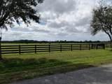 25952 Jockeys Run - Photo 1