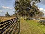 25701 Brians Trail - Photo 1
