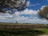 25701 Brians Trail - Photo 10