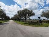 25701 Brians Trail - Photo 14