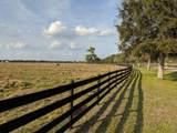 25701 Brians Trail - Photo 16