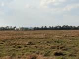 25701 Brians Trail - Photo 19