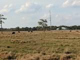 25701 Brians Trail - Photo 2