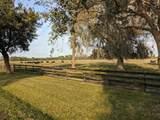 25701 Brians Trail - Photo 21